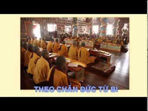 Ánh sáng Phật về