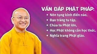 Vấn đáp Phật pháp: Nên tụng kinh điển nào, đạo tràng tu tập, Chùa to Phật lớn, học Phật...