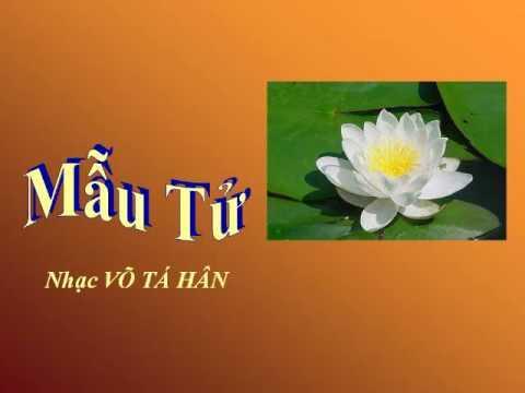 MẪU TỬ - Nhạc Võ Tá Hân - Thơ Thu Nguyệt - Ca sĩ Trung Hậu