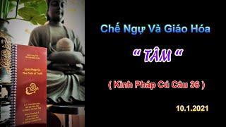 """Chế Ngự Và Giáo Hóa """" TÂM """" - Thầy Thích Pháp Hòa (Tv.Trúc Lâm. 10.1.2021)"""