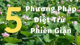 Kinh Thuỷ Dụ | TS Thích Nhất Hạnh(12-01-1997, Xóm Thượng, Làng Mai)