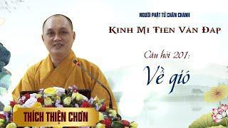 Kinh Mi Tiên: Câu 201 - Về gió - Thích Thiện Chơn