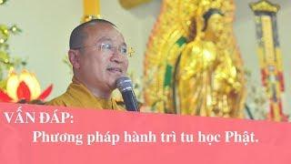 Vấn đáp: Phương pháp hành trì tu học Phật | Thích Nhật Từ