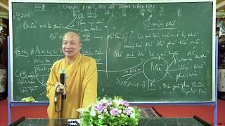 Niệm Phật trong ân || Thầy Thích Trí Huệ