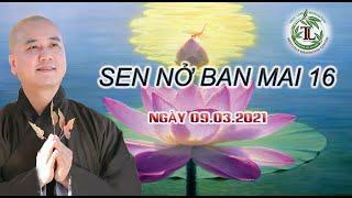 Sen Nở Ban Mai 16 - Thầy Thích Pháp Hòa (Tv.Trúc Lâm.Ngày9,3,2021)