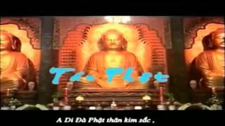 """Tụng """"48 Đại Nguyện Của Phật A Di Đà"""" (Bản Hán Văn)"""