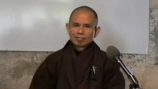 Còn Thở Được Là  Hạnh Phúc Lớn [Phật Pháp Căn Bản 41]  TS Thích Nhất Hạnh(28-04-1994, XH, LM)