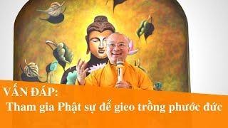 Vấn đáp: Tham gia Phật sự để gieo trồng phước đức | Thích Nhật Từ