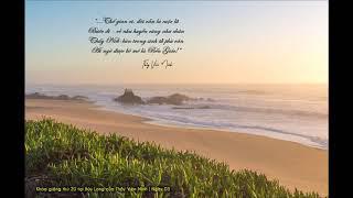 Ngày 3: Sự khiêm tốn tự nhiên - Thấy bằng trí tuệ - Tình thương không dính mắc... - HT Viên Minh