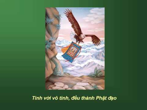 KINH VU LAN - LỜI NGUYỆN CUỐI - Võ Tá Hân phổ nhạc