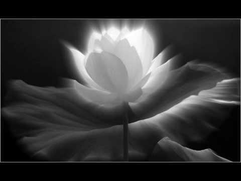 Niệm Nam Mô A Di Đà Phật (Chanting)