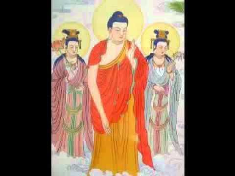 Niệm Phật Chuyển Hóa Tế Bào Ung Thư (Trọn Bộ, 3 Phần) (Rất Hay)