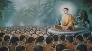 Phật Là Thầy Thuốc Vĩ Đại