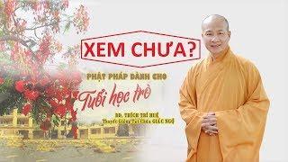 Phật pháp cho tuổi học trò    Thầy Thích Trí Huệ