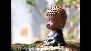 """Bài Kinh """"Nhập tức xuất tức quán"""" là dạy cách thoát khỏi Thiền định chứ không phải để tu Thiền định"""