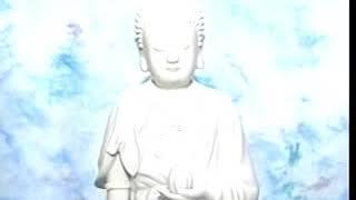 Kinh Vô Lượng Thọ (5-37) Pháp Sư Tịnh Không