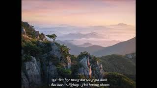 9A: Bài học trong đời sống gia đình - Bài học từ Nghiệp - Hồi hướng phước - HT. Viên Minh