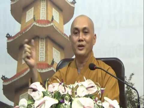 Vấn Đáp: Người Phật Tử Giết Muỗi Có Tội Không?